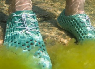 Vivo Barefoot and Bloom Foam create shoes that clean the ocean.